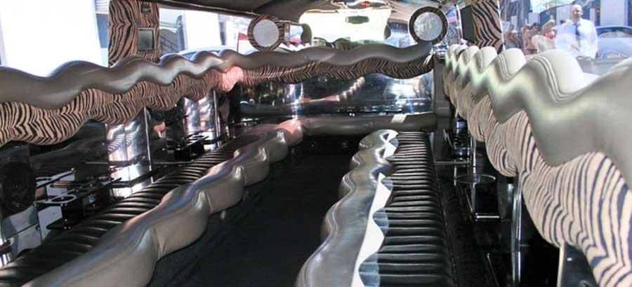 Hummer Rosa Interior